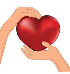 heart inside hands vector image vector image