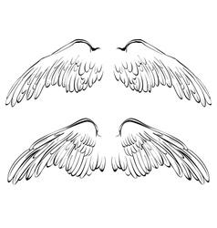 Wings sketch collection cartoon vector image