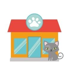 gray small cat green eyes pet shop facade paw vector image