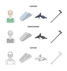 elderly men tablets pigeons walking caneold vector image