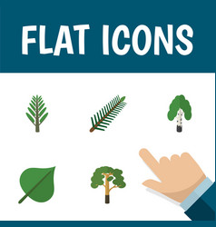 Flat icon natural set of jungle wood spruce vector
