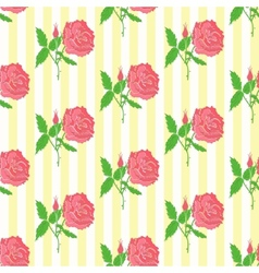 Floral seamless pattern Background of roses vector image