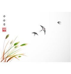 flying swallow birds and green grass traditional vector image