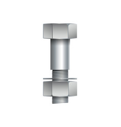metallic bolt with nut isolated on white vector image