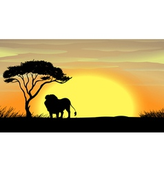 a lion under tree vector image