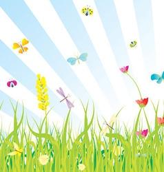 grass flowers butterflies meadow vector image vector image