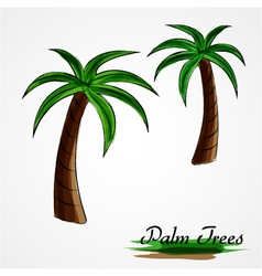 palm tree vector image vector image