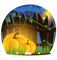Burning Pumpkins under the fence vector image