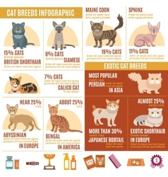 Cats infographics set vector image
