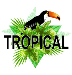 Green triangle with toucan vector