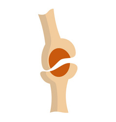 knee joint icon isolated vector image