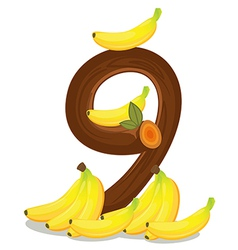 Nine bananas vector image
