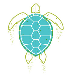 sea turtle continuous line vector image