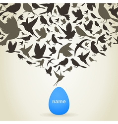 Birds from egg vector image vector image