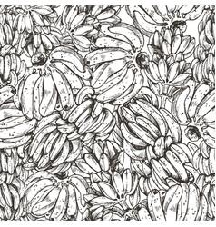 banana fruit sketch vector image