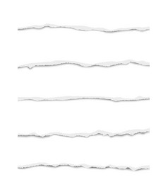 five oblong torn white paper wisps vector image