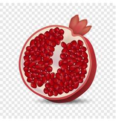 half pomegranate icon realistic style vector image