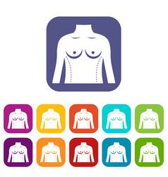 Plastic surgery of torso icons set flat vector