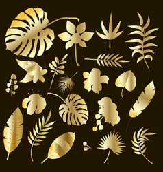 set of palm leaves gold silhouettes isolated on vector image