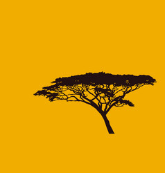 silhouette a tree on an orange background vector image