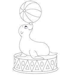 Circus seal equilibrist vector