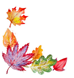 composition with autumn leaves vector image