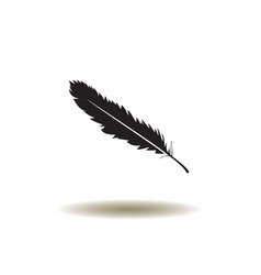 feather icon vector image