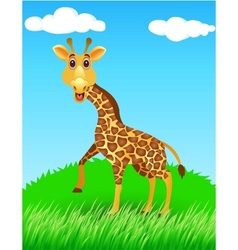 giraffe in the wild vector image