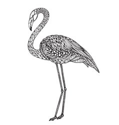 Hand drawn flamingo bird in ornate fancy doodle vector