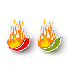 logos with chili pepper vector image