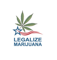 Marijuana leaf on usa flag vector