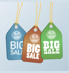Style sale tags design vector