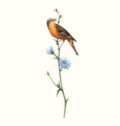 Watercolor bird on flower vector