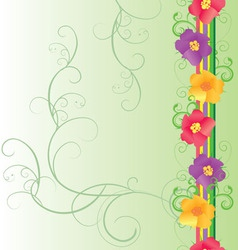 colorful flowers border on green vector image vector image