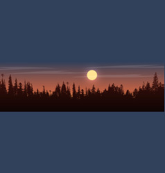 Panorama of view to trees on sunset vector