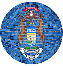Ball with michigan flag vector
