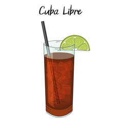 Cuba libre cocktail with lime decorations straw vector