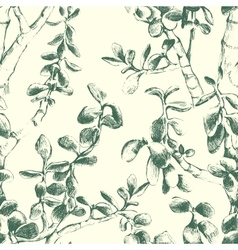 jade plant seamless pattern vector image