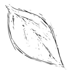 leaf1 vintage vector image