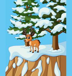 little deer on snow mountain vector image