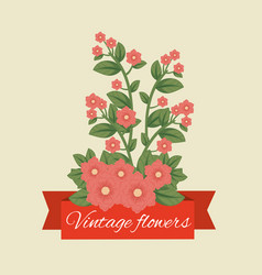 tropical flowers plants with leaves and ribbon vector image