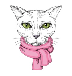 serious cat vector image vector image