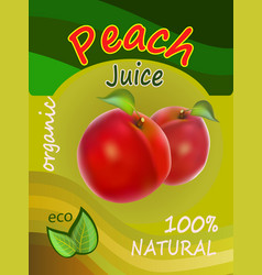 a packing of juice of red p vector image