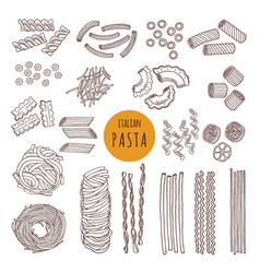 different types of italian pasta hand draw vector image