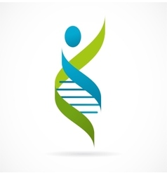 DNA genetic symbol - man icon vector image