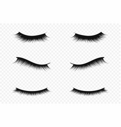 Eyelash extension concept lush black eyelashes on vector