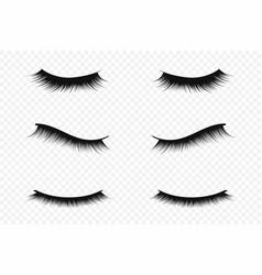 eyelash extension concept lush black eyelashes on vector image