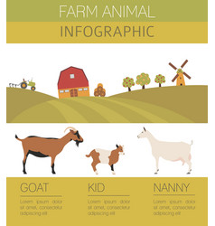 goat farming infographic template animall family vector image