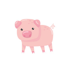Pink little pig with swirling tail farm livestock vector