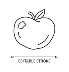 ripe apple linear icon organic fresh fruit thin vector image